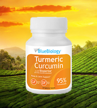 Image of the best rated turmeric supplement
