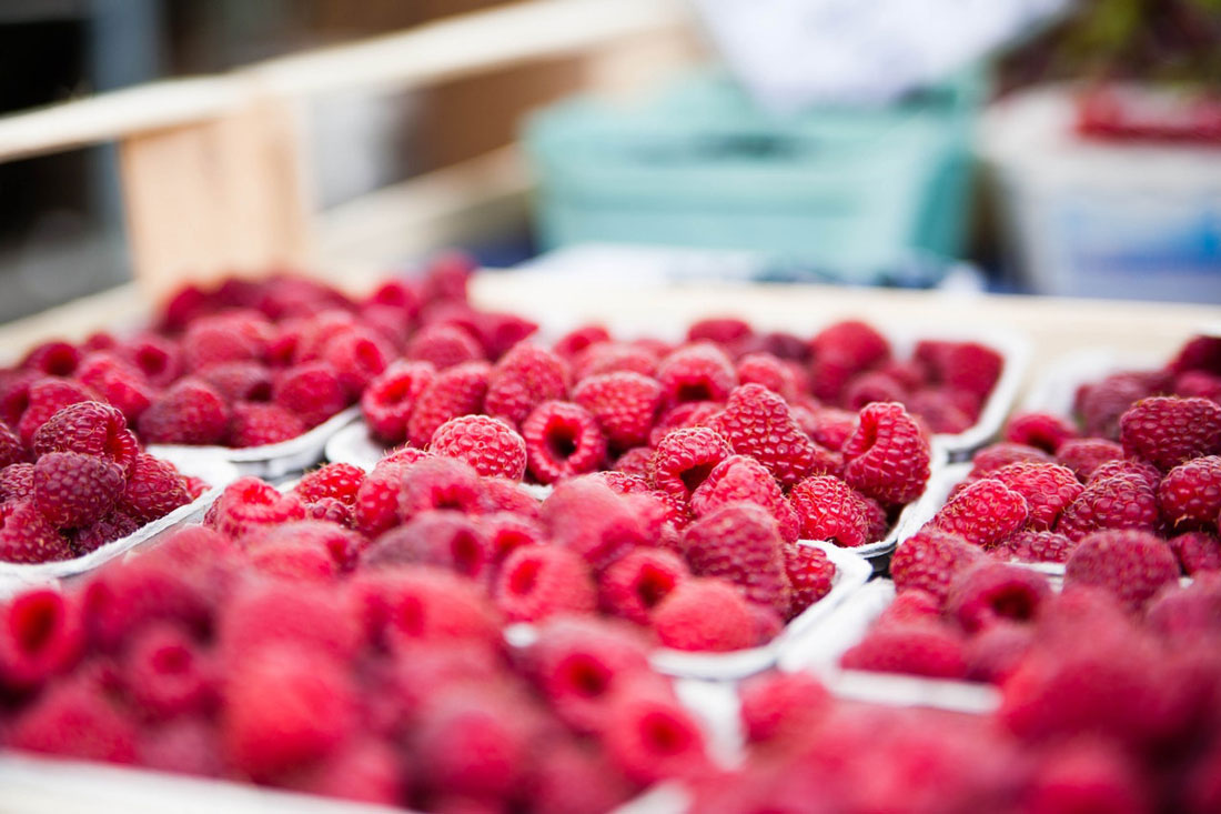 Cover image of red raspberries for article on the best raspberry ketone supplements