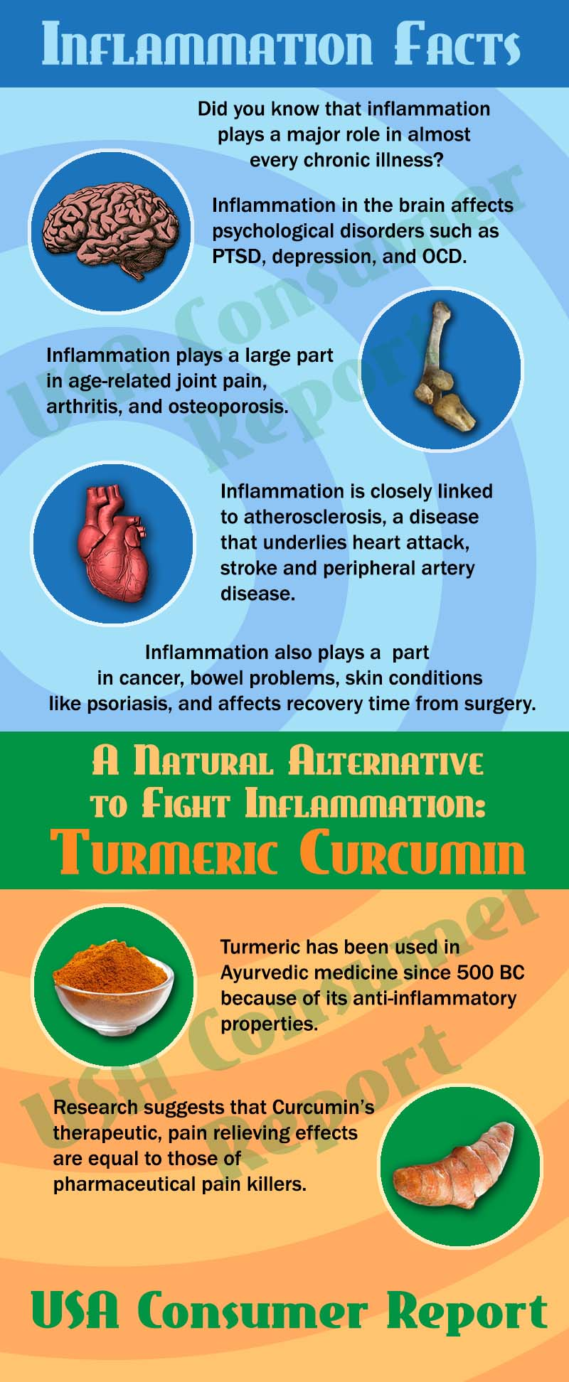 Infographic explaining how turmeric fights against inflammation