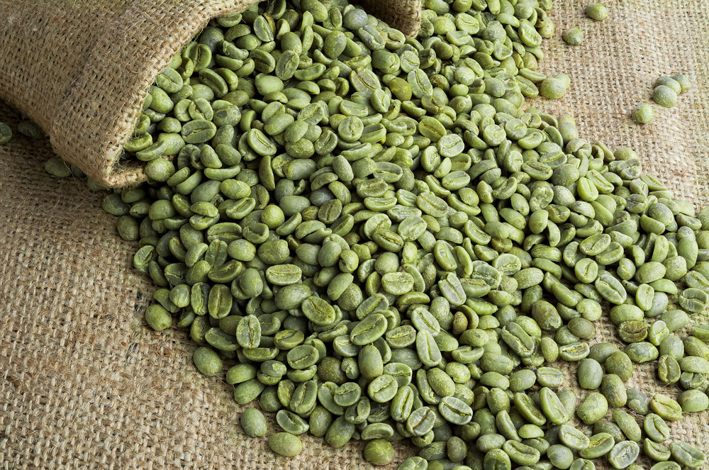 The 3 Best Green Coffee Bean Extract Supplements For Weight Loss